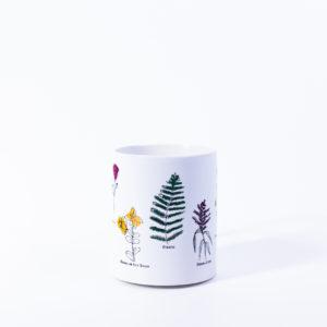 Taza Cerámica Herbas de San Xoán